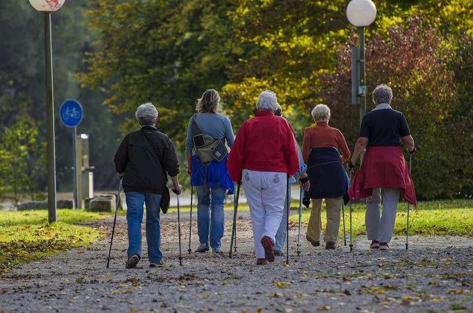 'Free' Nordic Walking Taster